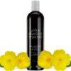 John Masters Organics szampon z wieczornym pierwiosnkiem