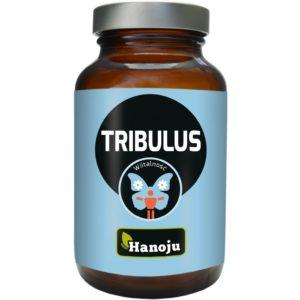 Hanoju Tribulus ekstrakt (Buzdyganek) 400 mg 90 tabletek