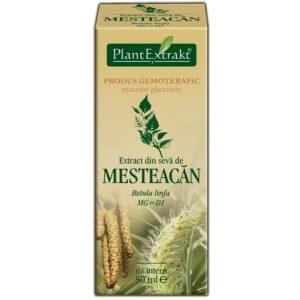 Brzoza wyciąg z soku Betula linfa Mesteacan PlantExtrakt 50 ml