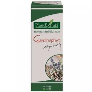 Giardinophyt PlantExtrakt 30 ml | Suplement na bakterie