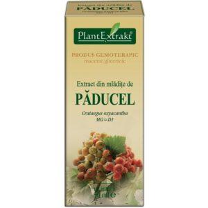 Głóg dwuszyjkowy Paducel PlantExtrakt (Crataegus oxyacantha) 50 ml