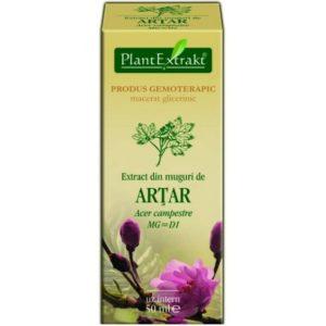 Klon polny (Acer campestre) ARTAR PlantExtrakt 50 ml
