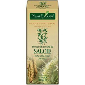 Kora wierzby białej Salcie PlantExtrakt (Salix alba cortex) 50 ml