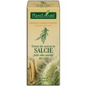 Kwiatostan wierzby białej (Salix alba amenti) Salcie PlantExtrakt 50 ml