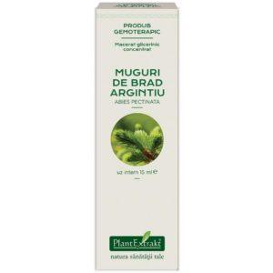 Macerat glicerynowy Abies pectinata PlantExtrakt 15 ml