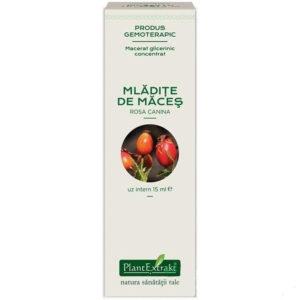 Macerat glicerynowy z dzikiej róży PlantExtrakt 15 ml