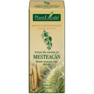 Brzoza brodawkowata nasiona Mesteacan MG=D1 PlantExtrakt 50 ml