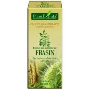 Nasiona jesiony wyniosłaego (Fraxinus excelsior semi) FRASIN PlantExtrakt 50 ml
