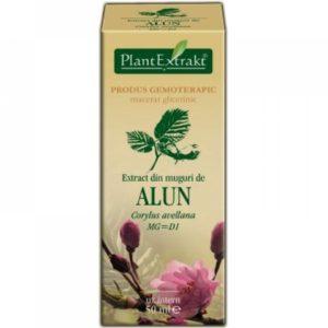 PlantExtrakt Alun Leszczyna pospolita (Corylus avellana) 50 ml