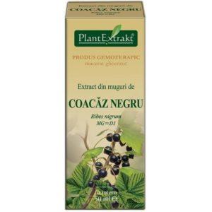 PlantExtrakt Coacaz Negru Czarna porzeczka (Ribes nigrum) 50 ml