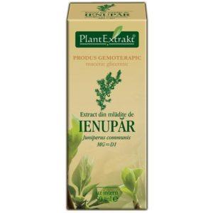 PlantExtrakt Ienupar Jałowiec pospolity (Juniperus communis) 50 ml
