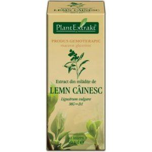 PlantExtrakt Lemn Cainesc Ligustr pospolity (Ligustrum vulgare) 50 ml