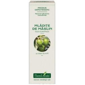 PlantExtrakt Mladite de Maslin 15 ml | Macerat glicerynowy z czarnej oliwki