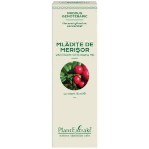 PlantExtrakt Mladite de Merisor 15 ml | Macerat glicerynowy z borówki brusznicy