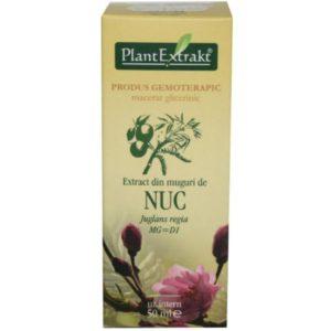 PlantExtrakt Nuc Orzech włoski (Juglans regia) 50 ml