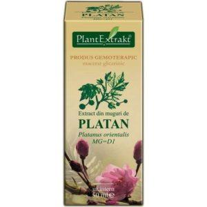 Platan wschodni (Platanus orientalis) PlantExtrakt 50 ml