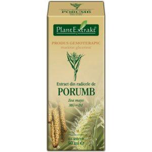 PlantExtrakt Porumb Kukurydza zwyczajna (Zea mays radices) 50 ml