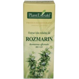 PlantExtrakt Rozmarin Rozmaryn lekarski (Rosmarinus officinalis) 50 ml