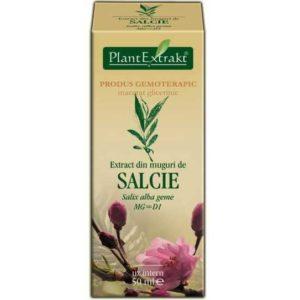 PlantExtrakt Salcie Wierzba biała (Salix alba geme) 50 ml