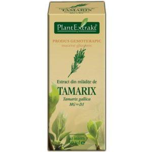 PlantExtrakt Tamarix Tamaryszek francuski (Tamarix gallica) 50 ml