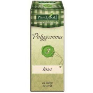 Polygemma 03 PlantExtrakt 50 ml | Wspomaganie oskrzeli