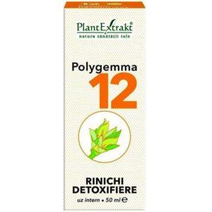 Polygemma 12 PlantExtrakt 50 ml | Oczyszczanie nerek