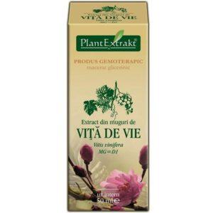 Winorośl właściwa (Vitis vinifera) Vita de vie PlantExtrakt 50 ml